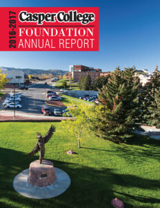 2017 Foundation Annual Report Cover image